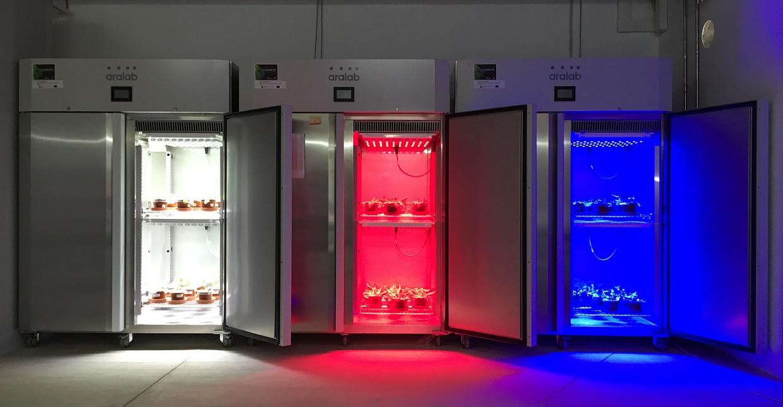 Aralab LED chambers